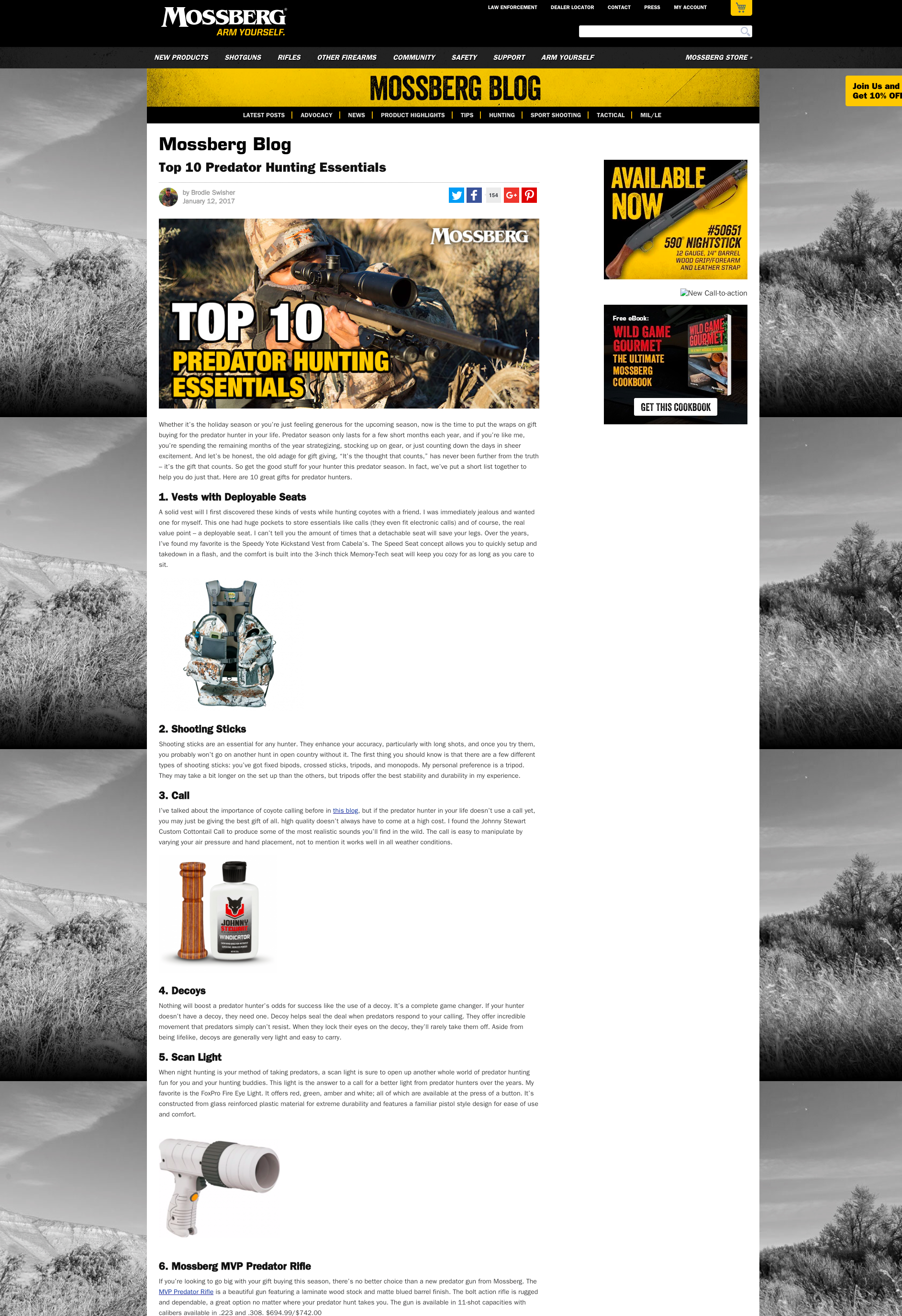 Screen Capture of Blog | Snyder Group